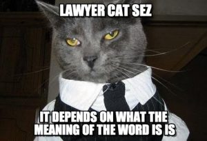 lawyercat
