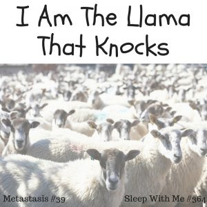 I Am The LlamaThat Knocks