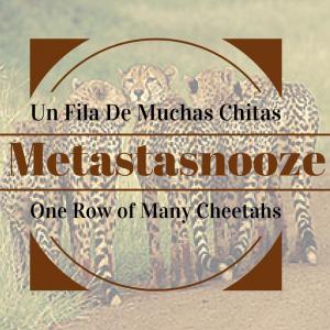 Un Fila De Muchas Chitas1
