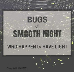 BUGS of SMOOTH