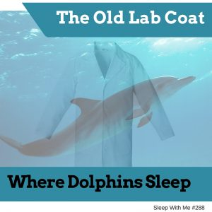 The Old Lab Coat