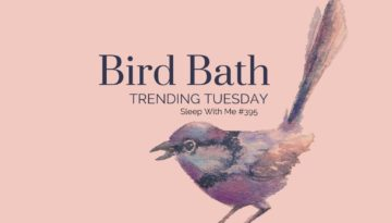 Bird Bath | Trending Tuesday Guided Meditation