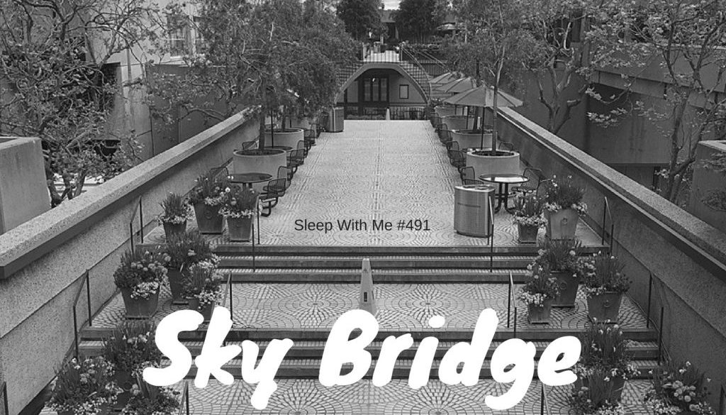 Skybridge Discovery Tour | Sleep With Me #492